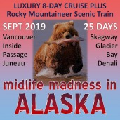 Midlife Madness in Alaska